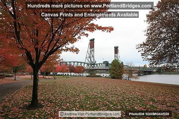 Hawthorne Bridge, Fall Leaves, Tom McCall Waterfront Park