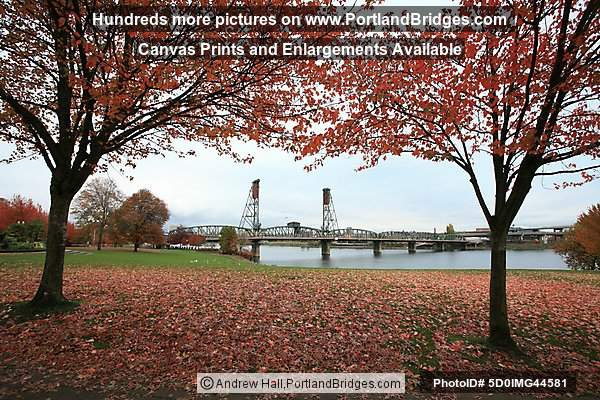 Fall Leaves, Hawthorne Bridge, Waterfront Park (Portland, Oregon)