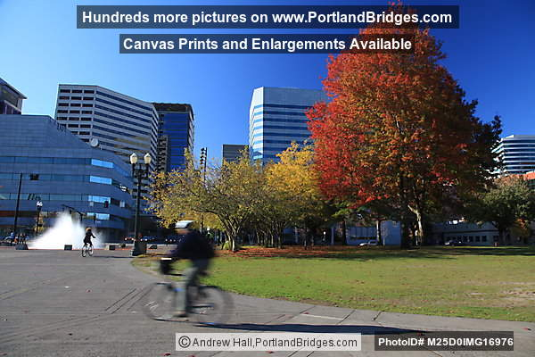 Salmon Street Fountain, Cyclist, Fall Leaves, Tom McCall Waterfront Park (Portland, Oregon)
