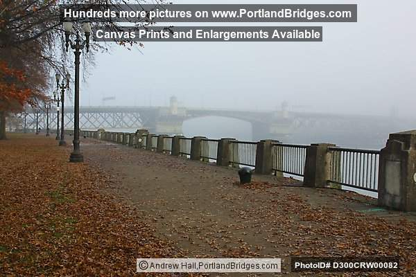 Burnside Bridge, Tom McCall Waterfront Park, Fall Leaves (Portland, Oregon)