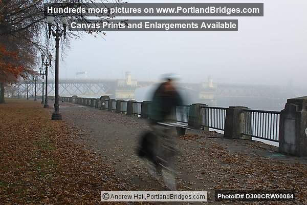 Tom McCall Waterfront Park, Fall Leaves (Portland, Oregon)