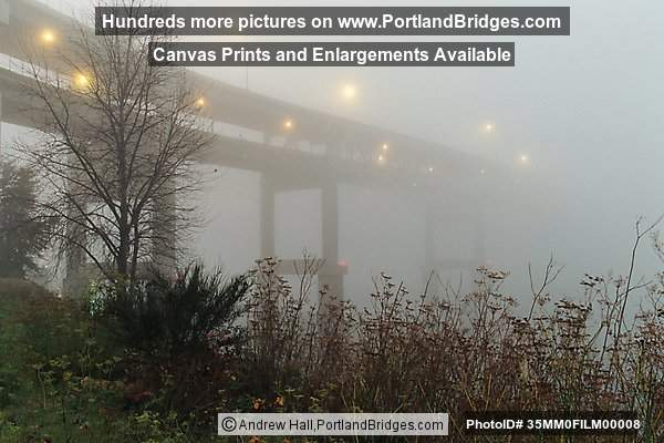 Marquam Bridge, Foggy
