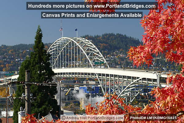 Fremont Bridge, Fall Leaves, from North Portland