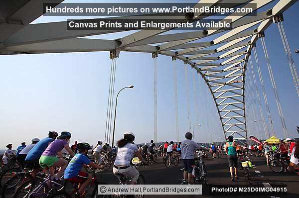 Cyclists On Fremont Bridge, Bridge Pedal 2012 (Portland, Oregon)