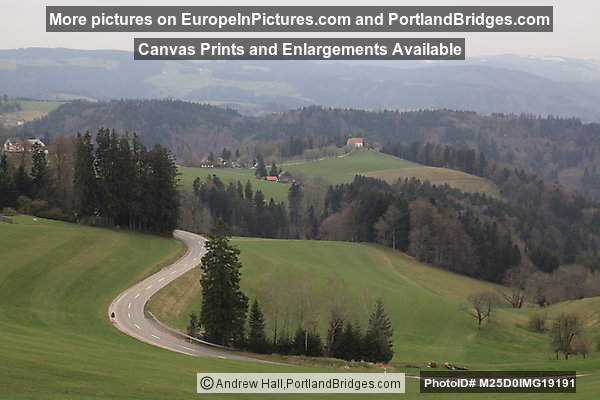 View from Hiking Trail, Black Forest