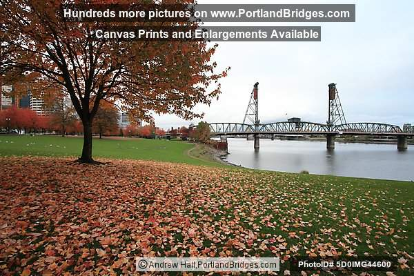 Hawthorne Bridge, Fall Leaves, Tom McCall Waterfront Park (Portland, Oregon)
