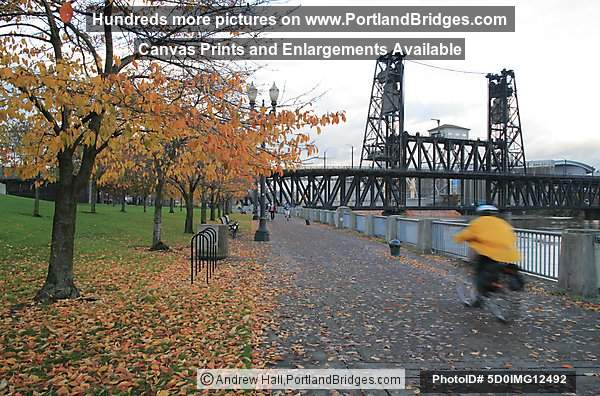 Steel Bridge, Fall Leaves