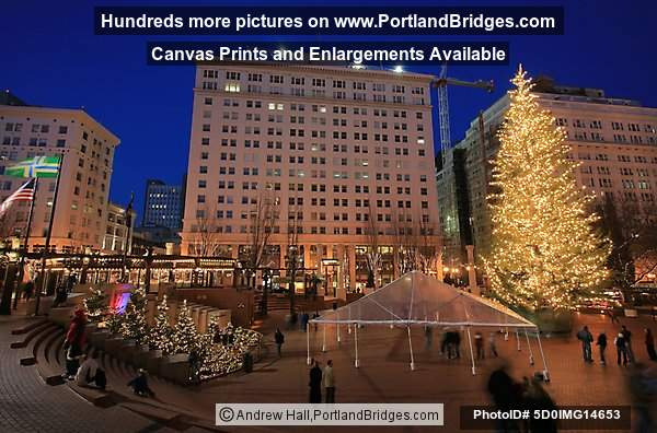 Pioneer Courthouse Square, Portland, Christmas Tree