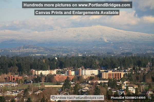 SE Portland from Mt. Tabor