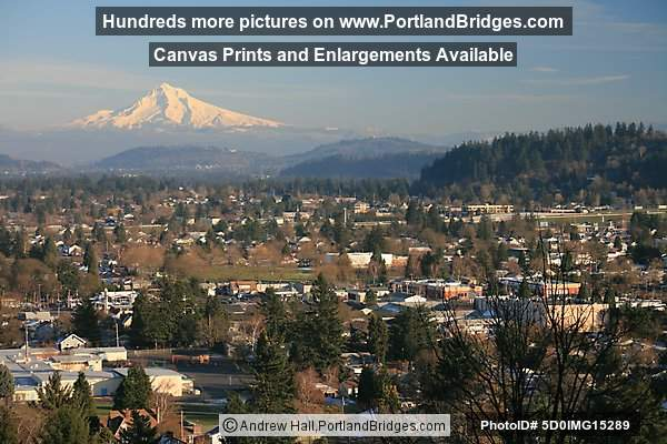 Mt. Hood, East Portland, from Mt. Tabor