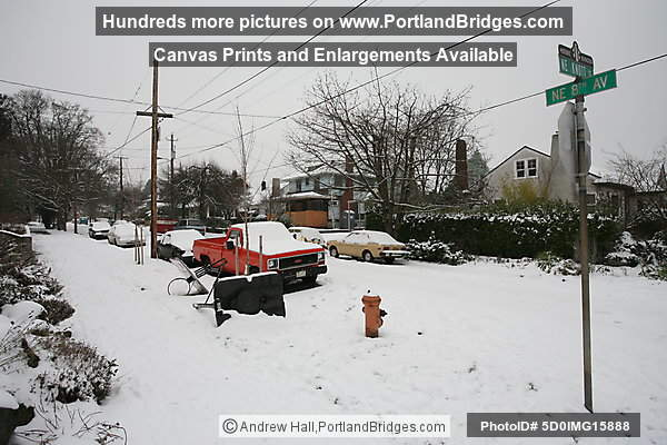 Portland Snow, Irvington Neighborhood, Northeast Portland