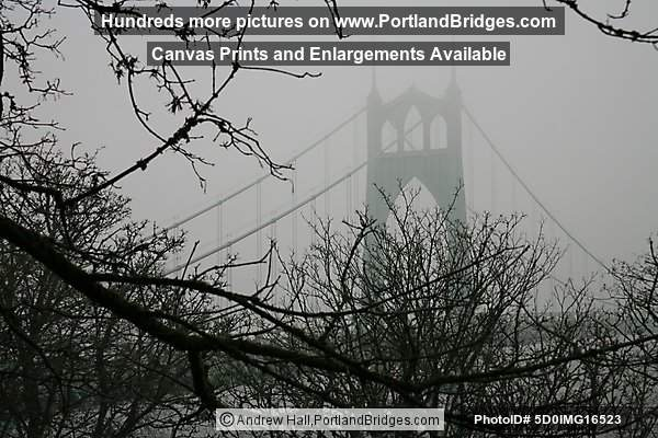 Portland St Johns Bridge Fog
