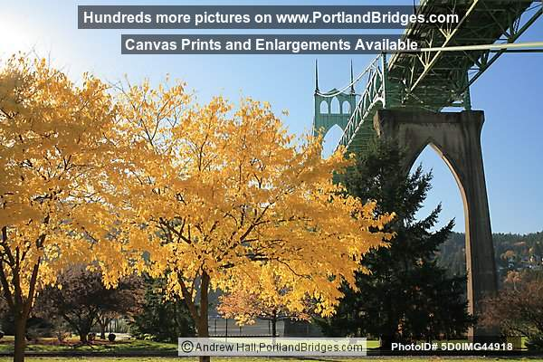 St. Johns Bridge, Fall Leaves (Portland, Oregon)