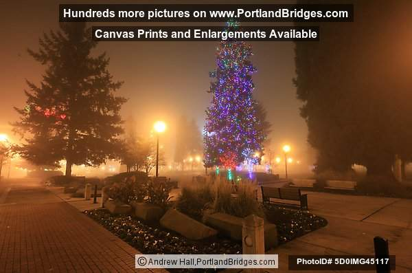 Esther Short Park Christmas Tree, Vancouver, WA, 2008
