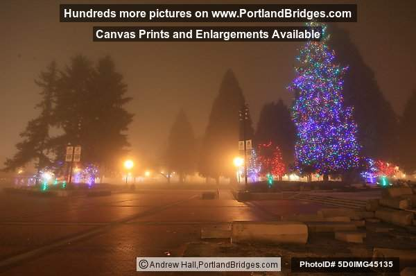 Esther short park christmas tree lighting