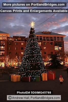 Pearl District, Jamison Square Christmas Tree, 2008 (Portland, Oregon)