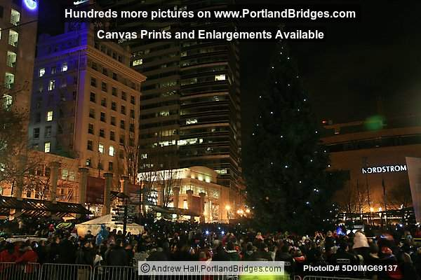 Portland Christmas Tree, Pioneer Courthouse Square, 2010
