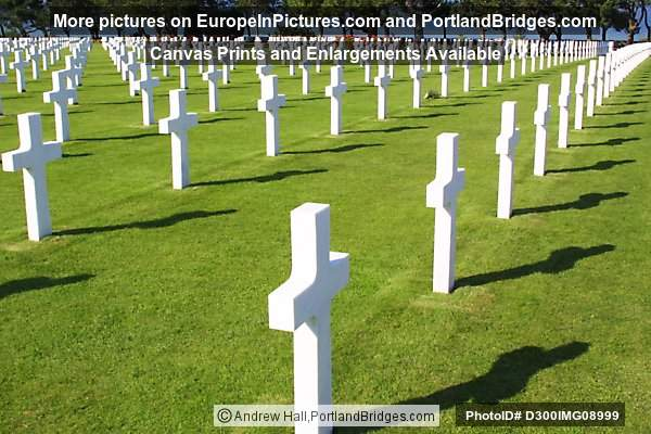 Crosses, American Cemetery and Memorial, Normandy, France