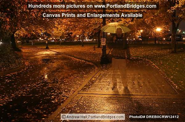 Tom McCall Waterfront Park, Fall Leaves, Dusk, Rainy (Photographer in long exposure) (Portland, Oregon)
