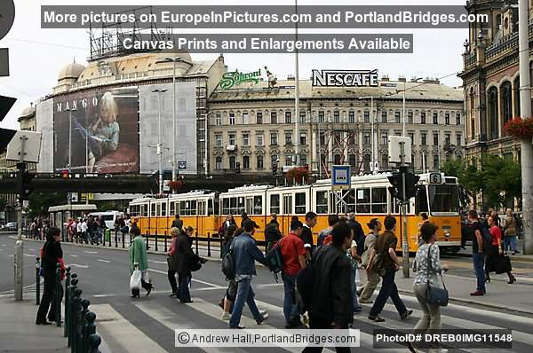 Budapest Stret View, Trams