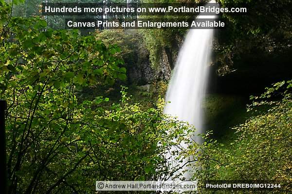 Silver Falls State Park:  North Falls