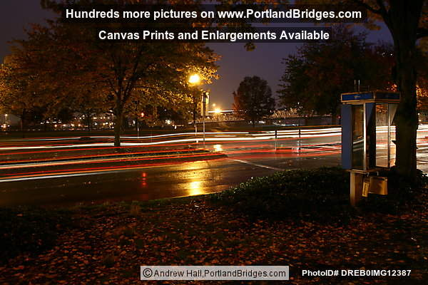 Tom McCall Waterfront Park, Fall Leaves, Dusk, Rainy (Portland, Oregon)