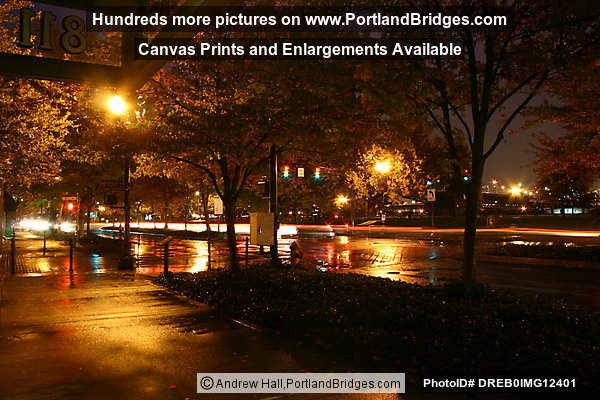 Tom McCall Waterfront Park, Fall Leaves, Dusk, Rainy