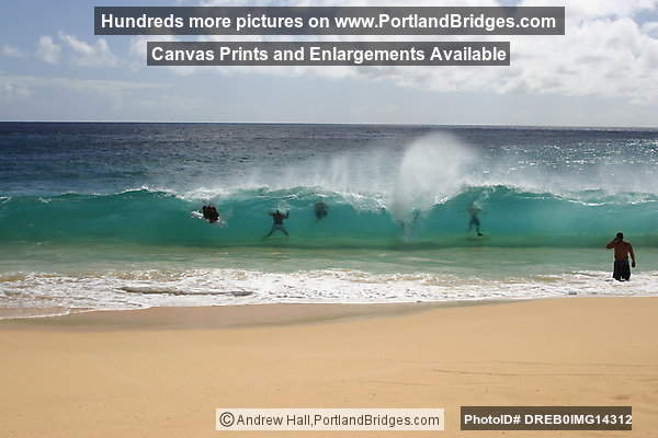 Oahu Hawaii Sandy Beach