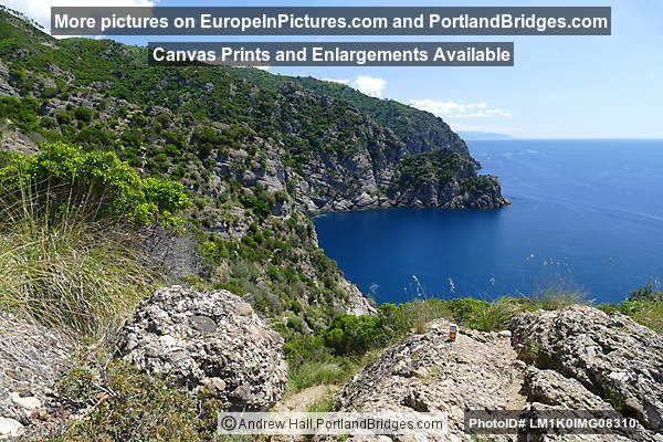 View from hike between San Rocco and San Fruttuoso