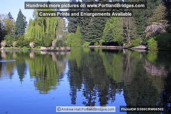 Laurelhurst Park, Lake, Ducks, Portland