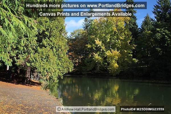 Laurelhurst Park Pond, Fall Leaves, Reflections (Portland, Oregon)