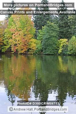 Laurelhurst Park, Lake Reflections, Fall Leaves (Portland, Oregon)