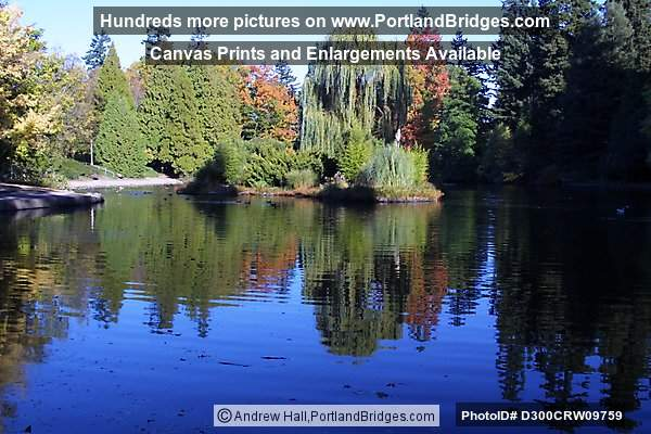 Laurelhurst Park, Fall Leaves, Lake Reflections