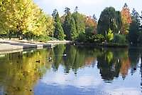 Portland Laurelhurst Park Fall Leaves