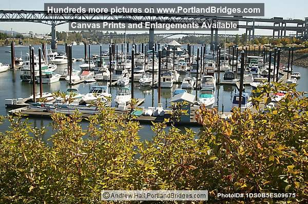 Riverplace boats, Marquam Bridge (Portland, Oregon)