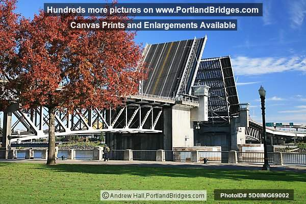 Morrison Bridge, Raised, Fall Leaves (Portland, Oregon)