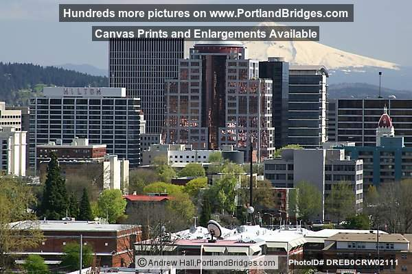 Portland Buildings and Mt. Hood, Daytime