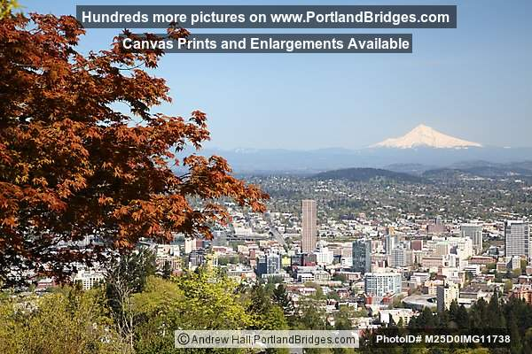 Portland Mt. Hood View from Pittock Mansion