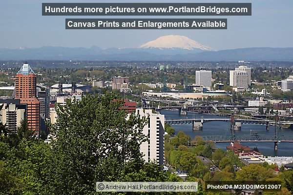 Mt. St. Helens, Bridges, North East Portland Buildings