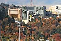 OHSU <i>Collection, 22 images</i>