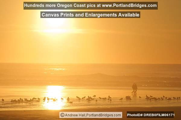 Newport, Oregon Nye Beach, Sunset