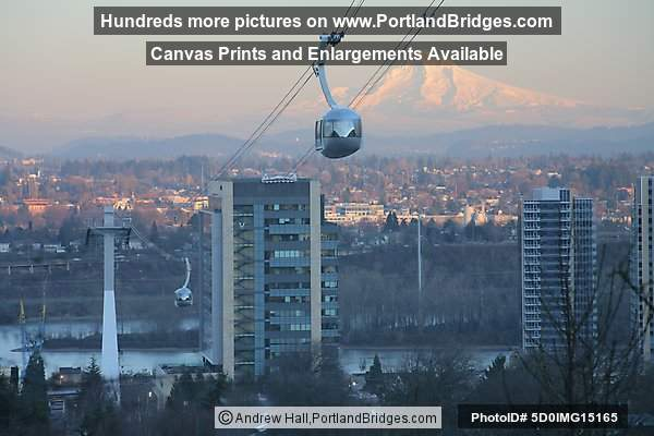 portland u0026 39 s ohsu aerial tram with mt  hood photo 5d0img15165