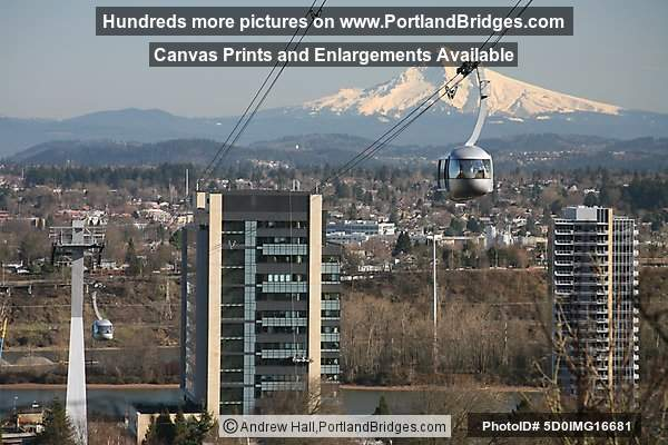 Portland South Waterfront, OHSU, Aerial Tram