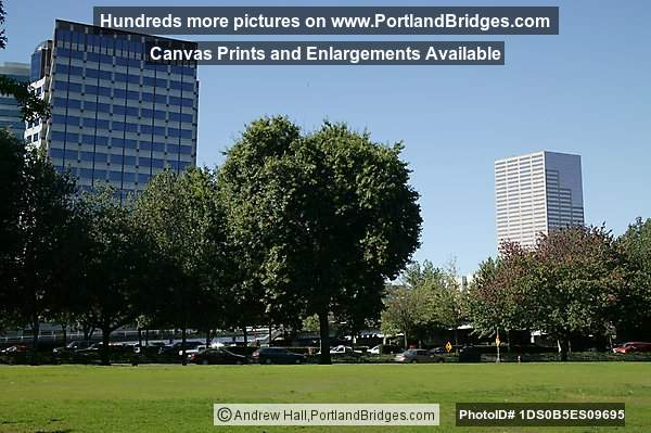 Tom McCall Waterfront Park, Daytime (Portland, Oregon)