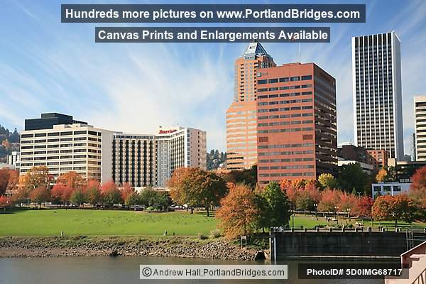 Waterfront, Fall Leaves, Portland Buildings