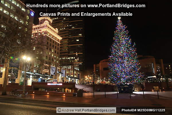 2012 Pioneer Courthouse Square Christmas Tree, Night (Portland, Oregon)