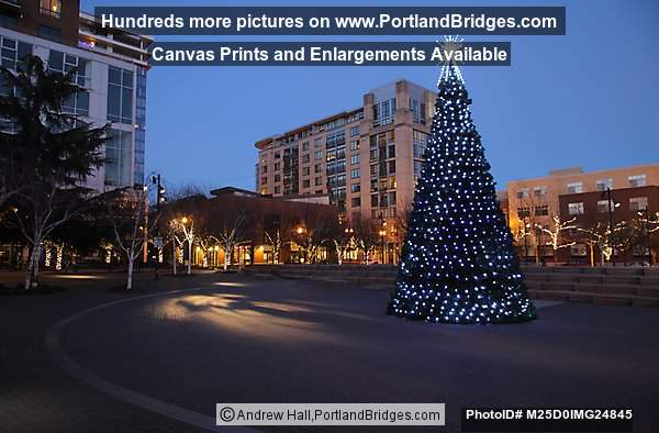 Christmas Tree 2014, Jamison Square, Pearl District, Portland