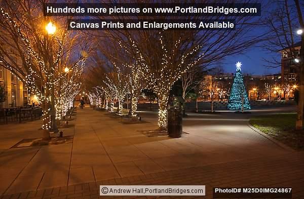 District Jamison Square, Christmas Lights, Portland