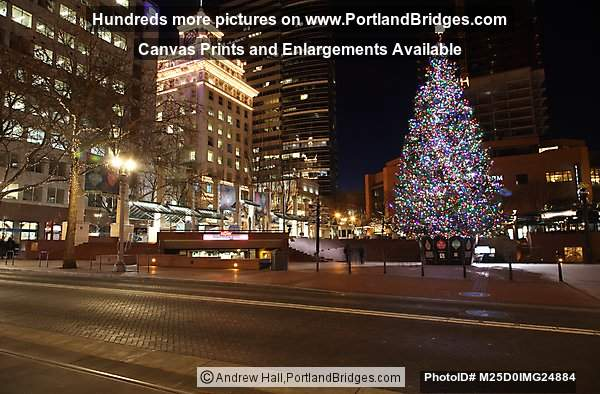 Pioneer Courthouse Square Christmas Tree 2014, Night, Portland