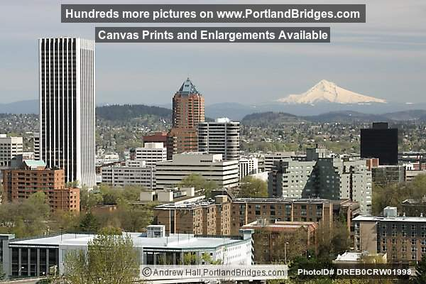 Mt. Hood, KOIN Tower, Wells Fargo Tower, Daytime (Portland, Oregon)